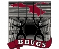 BBUGS 2016 Scholarships